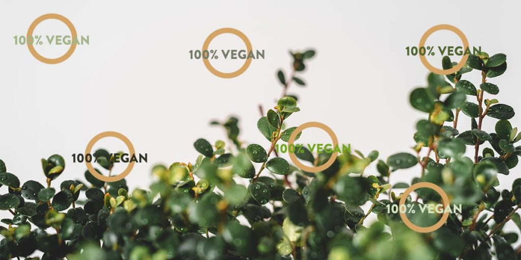 Liège Évasion les labels vegan